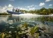 AUS OCEARCH IMAGE 14 explore mangroves